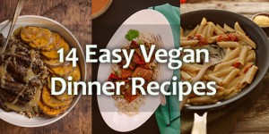 14 Easy Vegan Dinner Recipes